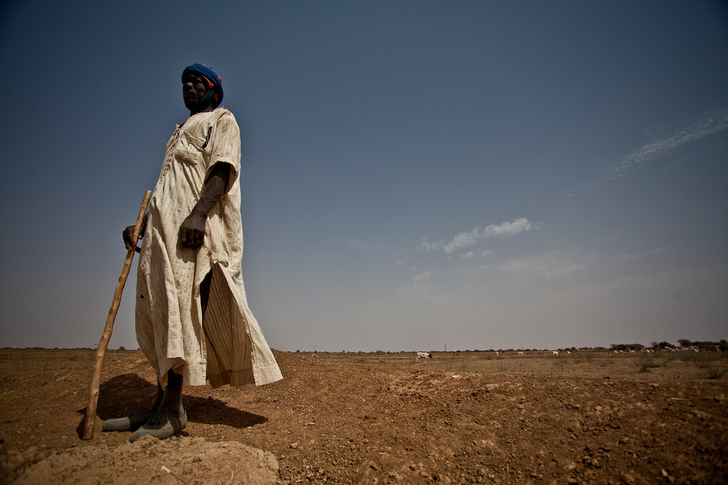 Eleveur Mauritanie, Ahmet Di Ba, Pepisao