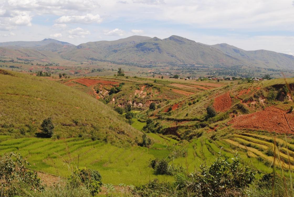 15 ans d agro cologie madagascar un pari gagnant for Agence paysage de l ouest
