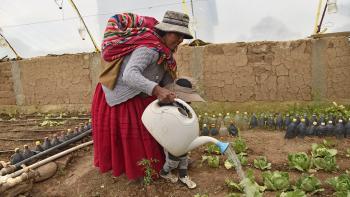 Bolivie, eau