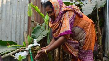 Femme, accès à l'eau potable, Dacca, Bangladesh, Eau et Vie ONG