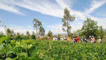 Visite des parcelles de démonstration du collège de Vinany, Madagascar, sensibilisation agro-écologie