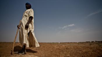 farmer, Mauritania, Ahmet Di Ba, Pepisao