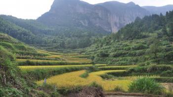 parc naturel de Xianju, Chine, biodiversité