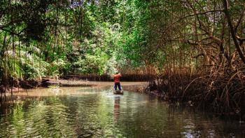 Paul Leadley (IPBES) : « La biodiversité devrait être un aussi grand enjeu que le climat »