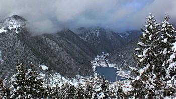 La Turquie intègre le changement climatique dans sa politique forestière
