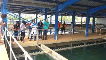 Des élèves visitent la station de traitement de Ggaba, à Kampala