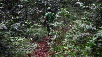 Gabon, poaching, forests