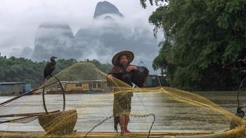 Fisherman in Yangshuo (in Guangxi, China)