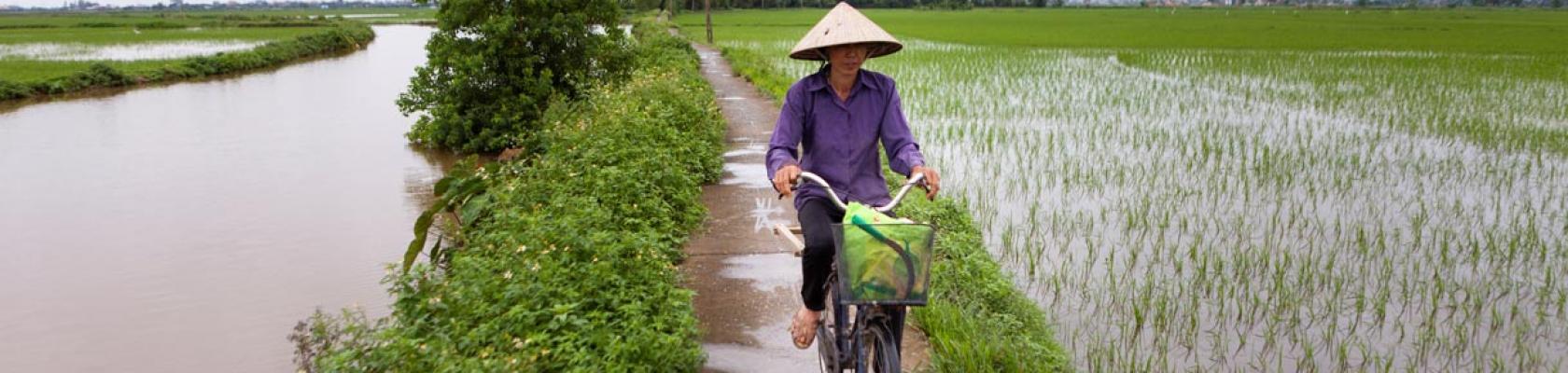 Bassin du fleuve Rouge, Vietnam