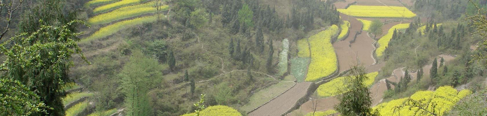 Nature, Chine