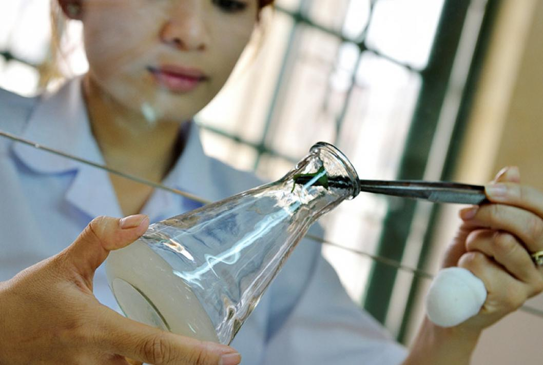 Woman, laboratory, vicational training, Vietnam