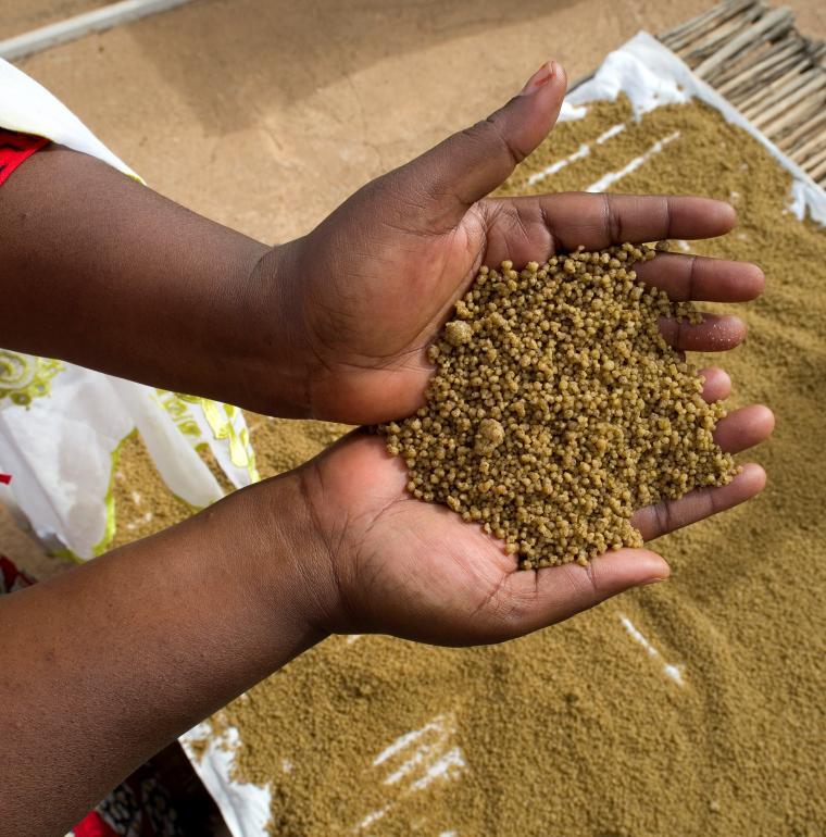 Niger agriculture céréale secteur privé