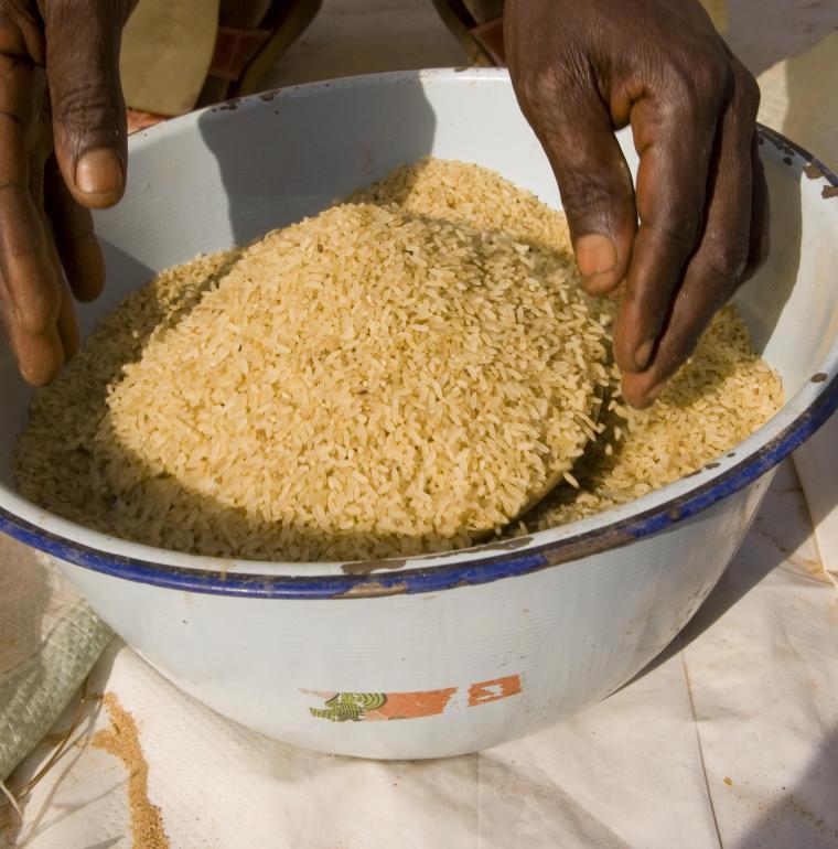 Nigéria bol de riz alimentation