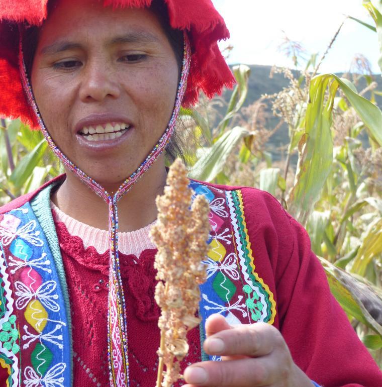 Pérou femme agriculture