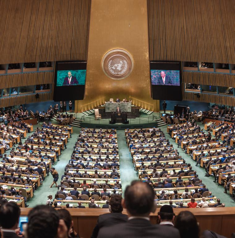 General Assembly of the United Nations