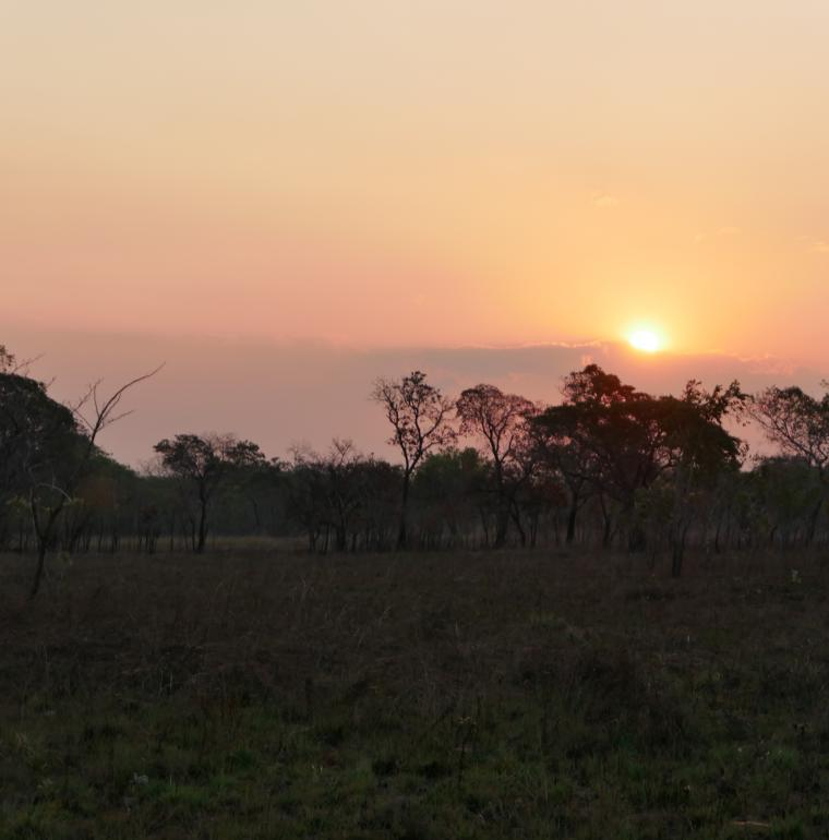 Mozambique, sunfall, wilderness, Gilé