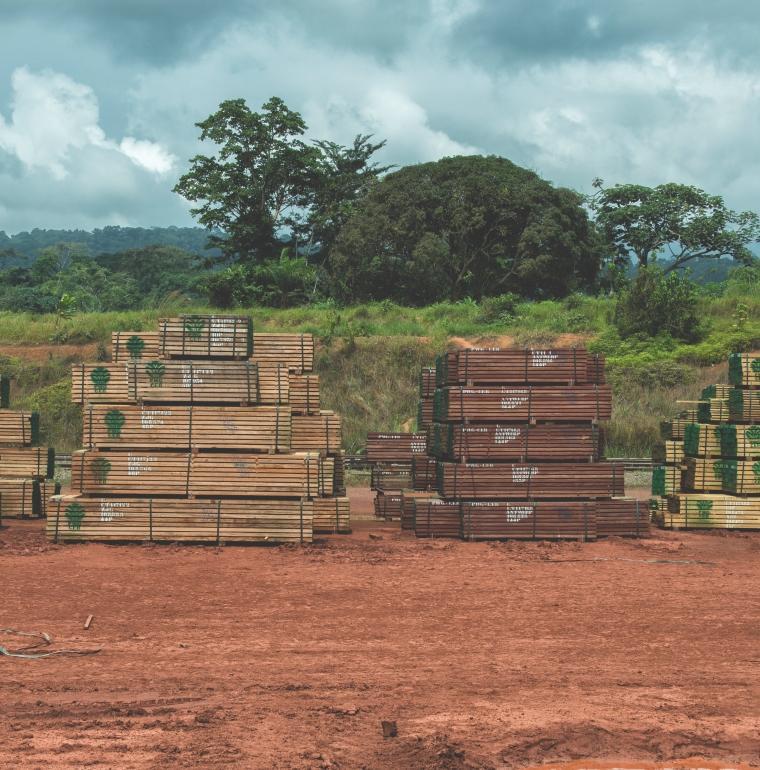 exploitation, forêts, pile de bois, Gabon