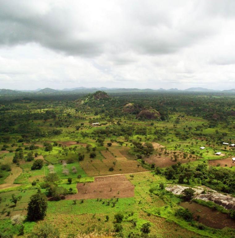 Bénin Champs agricoles