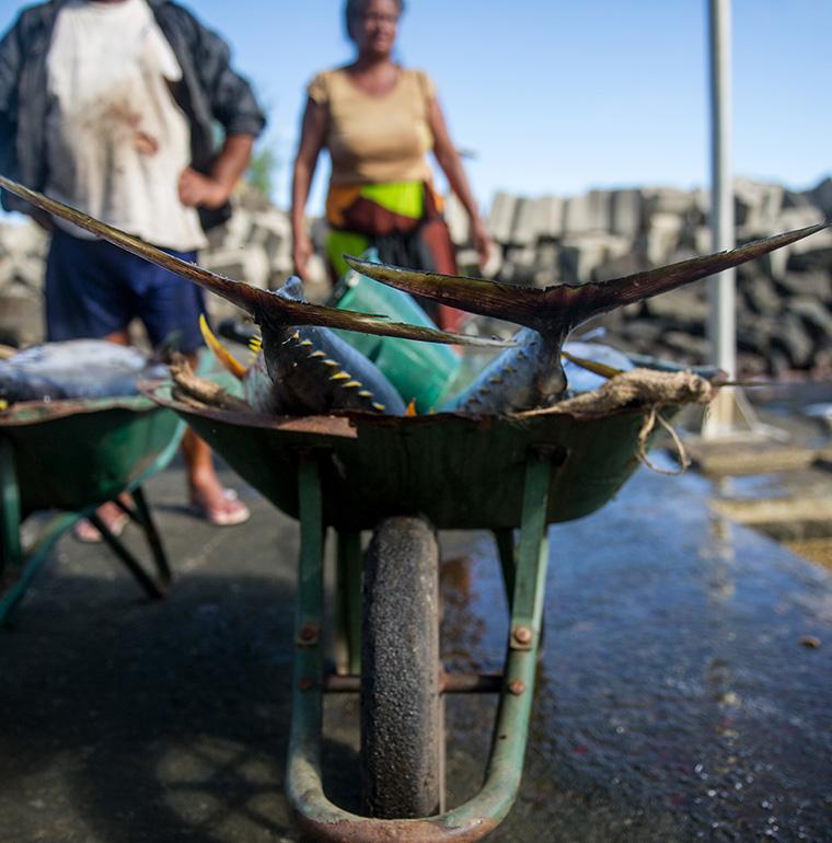 Polynesie Française Fatu Hiva pêche poissons