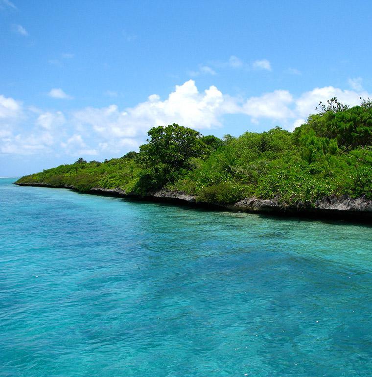 L'île aux Aigrettes, Maurice