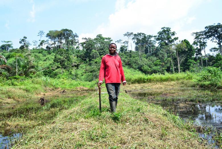 Favoriser les investissements productifs de la diaspora camerounaise