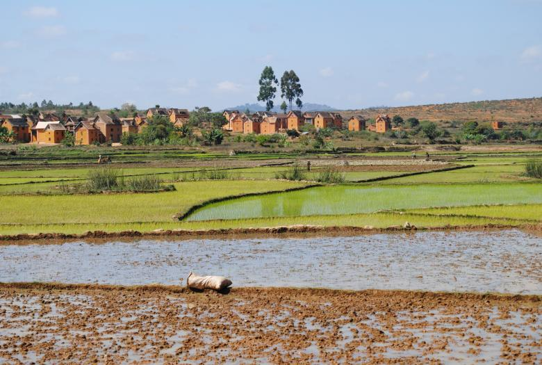 paysage rural, agriculture, maisons, Madagascar