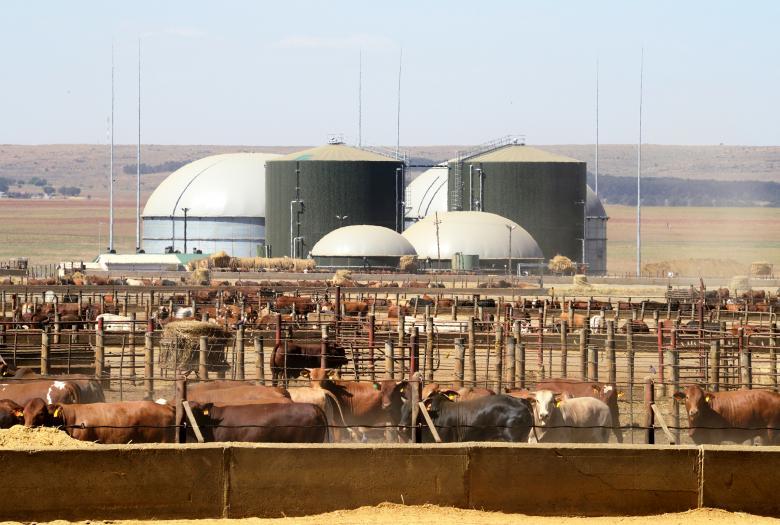 sunref, efficacité énergétique, PME, afrique du sud
