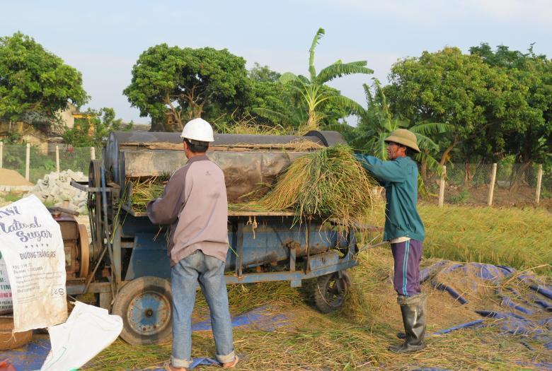 Lutte contre la montée des eaux dans les provinces de Ninh Binh, Ha Tinh et Can Tho - Image -