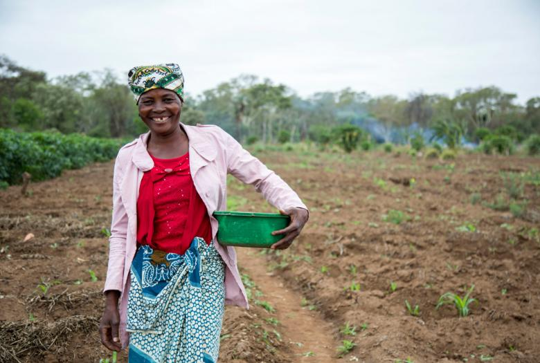 woman, field, limpopo, mozambique