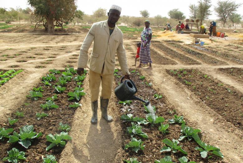 Soutenir la production agricole pour faire face aux crises alimentaires