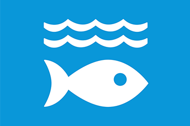 ODD 14 océans