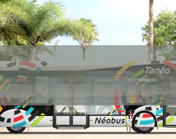 New Caledonia, transport, Néobus, bus