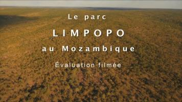 Visuel Limpopo
