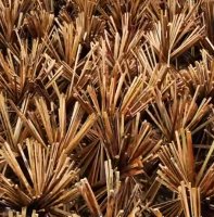 bambou, ONG GRET, filière durable