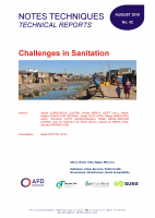 publication on challenges in sanitation from AFD