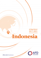 Strategy Indonesia 2017-2021