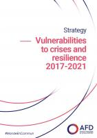 Strategy Vulnerabilities to Crises and Resilience 2017-2021