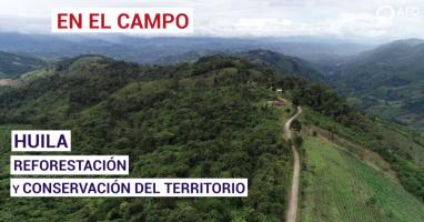 HUILA: Reforestación y conservación del territorio