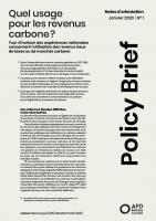 usage-revenus-carbone