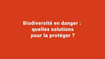 Biodiversité en danger : quelles solutions pour la protéger ?