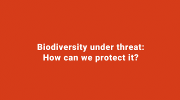 Biodiversity under threath: how can we protect it?