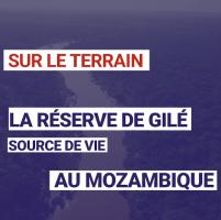 La réserve de Gilé : Source de vie au Mozambique