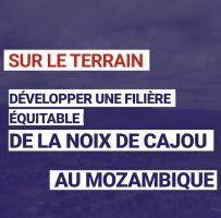 Développer une filière équitable de la noix de cajou au Mozambique
