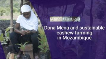 Dona Mena and sustainable cashew farming in Mozambique