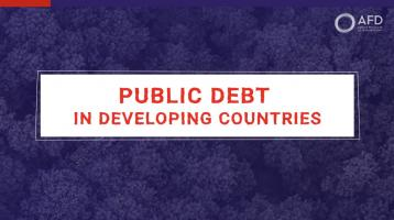 Public debt in developping countries with Maxime Terrieux