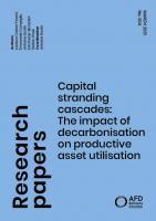 Capital stranding cascades_couv1