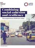 Combining Social Cohesion and Resilience: The Experience of African Cities