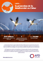 L'AFD et la biodiversité en Chine