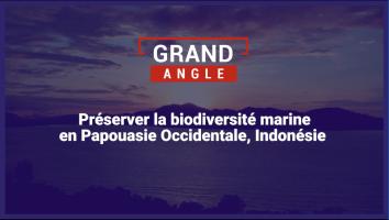 Préserver la biodiversité marine en Papouasie Occidentale, Indonésie