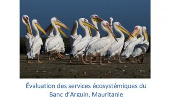 Evaluation des services écosystémiques du Banc d'Arguin, Mauritanie